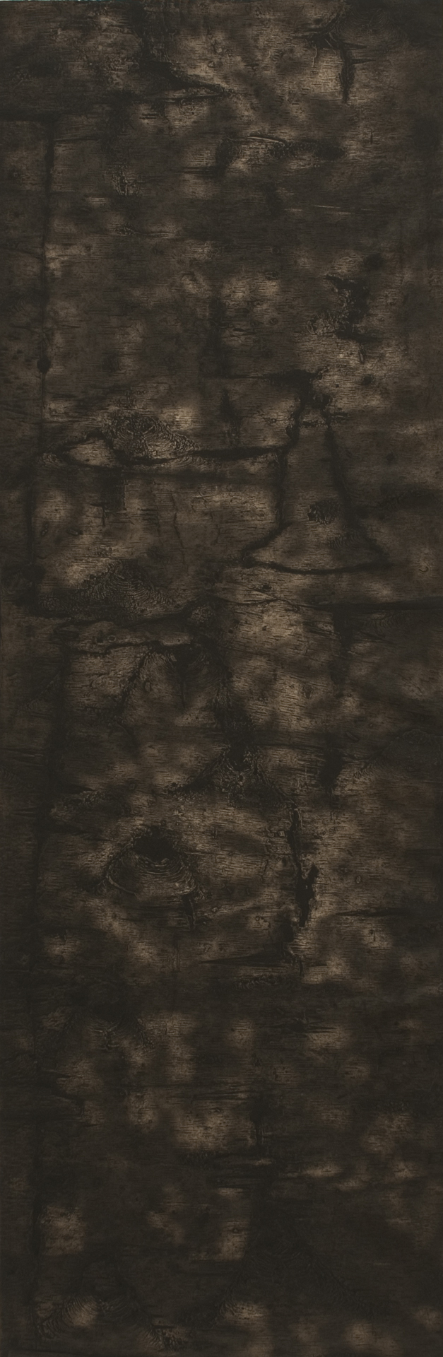 "Birch III – 70"" x 23"" Bark Intaglio and Rust Monoprints on Okawara"