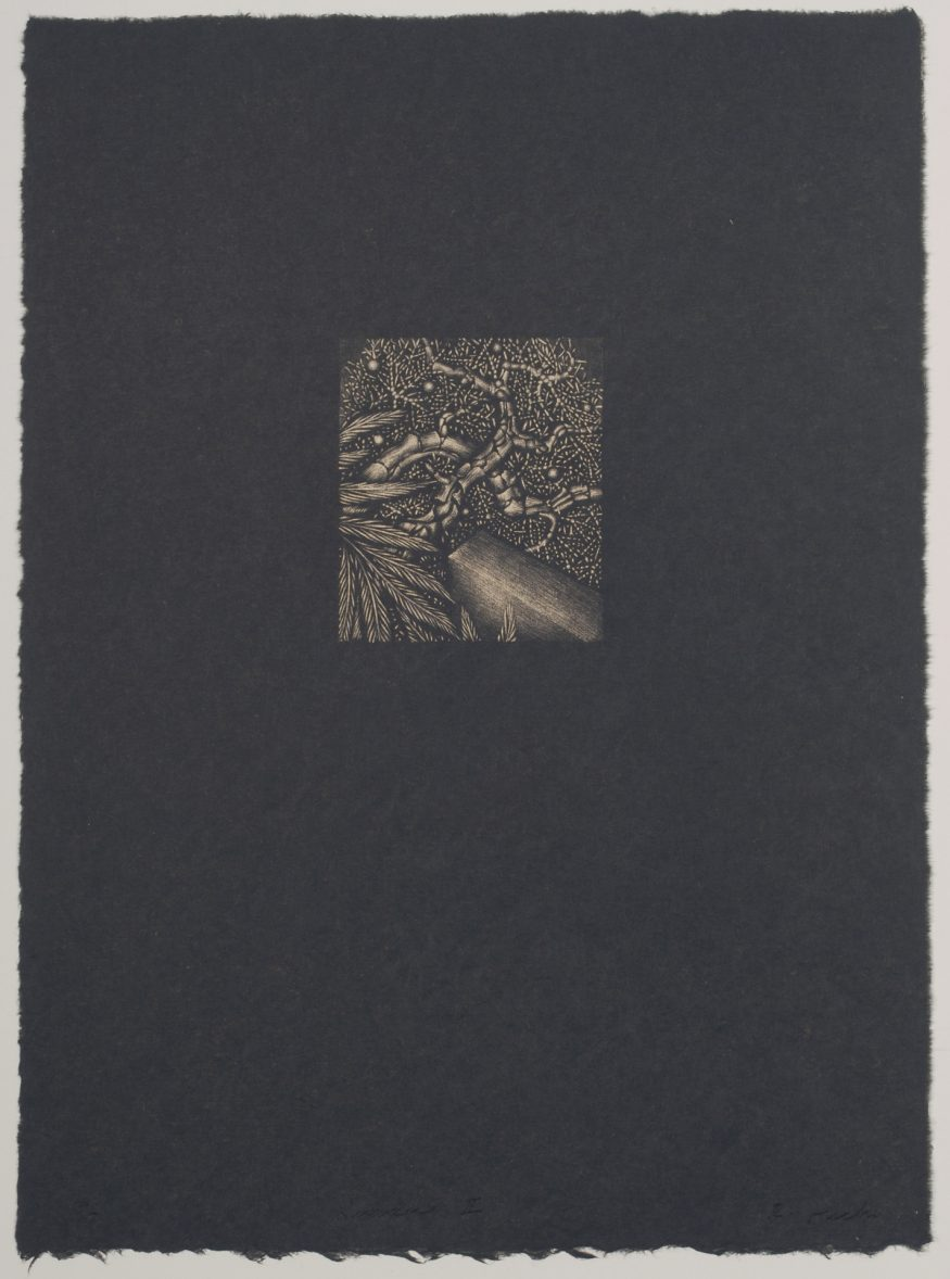 "Juniper II – 15"" x 11"" Lithograph on Kitakata"