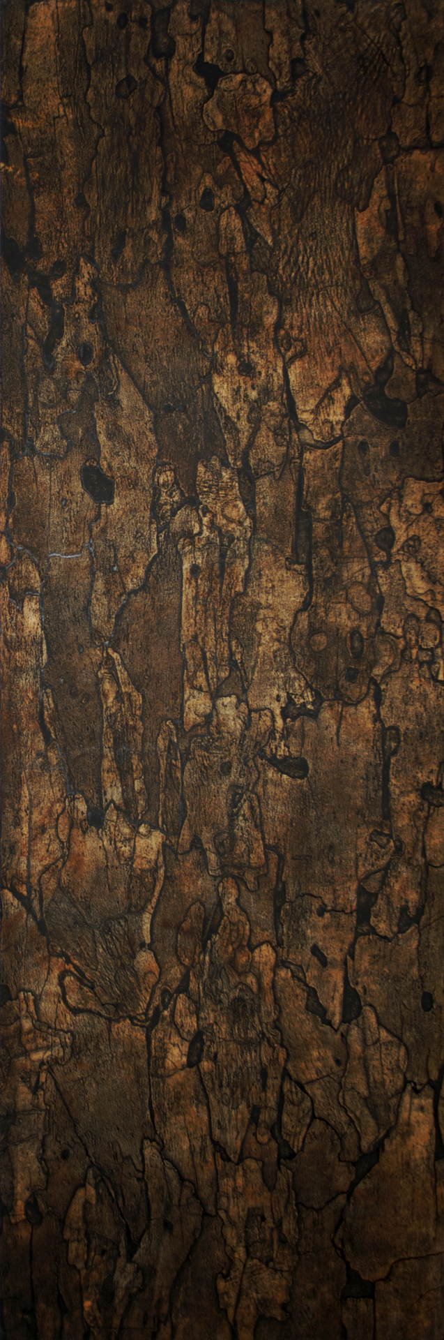 "Sycamore II – 70"" x 23"" Bark Intaglio and Rust Monoprints on Suzuki"