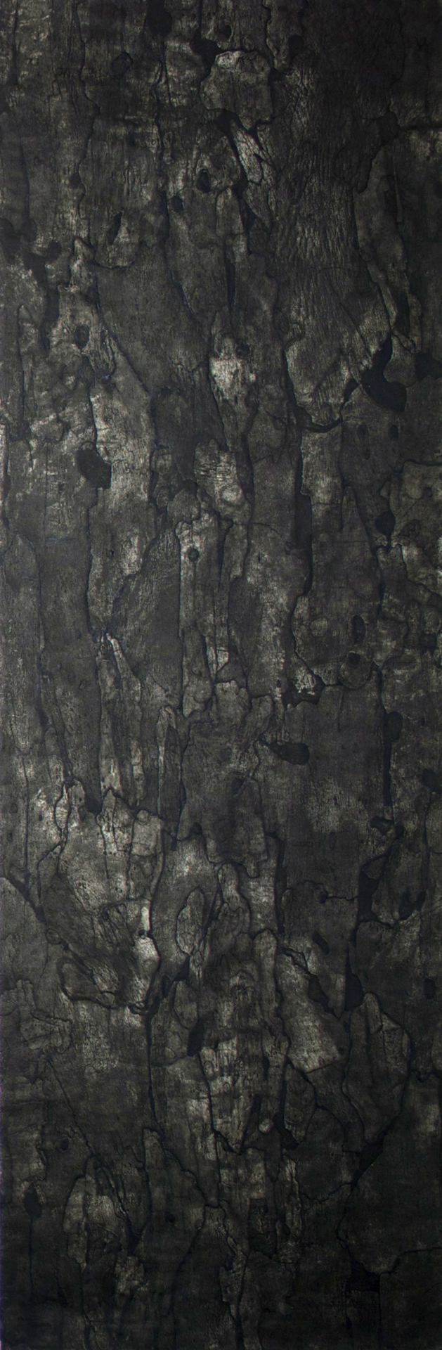 "Sycamore IV – 70"" x 23"" Bark Intaglio and Rust Monoprints on Suzuki"