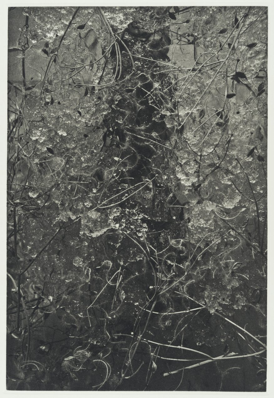 "Thaw I – 20"" x 16"" Copperplate Photogravure on Somerset Satin"