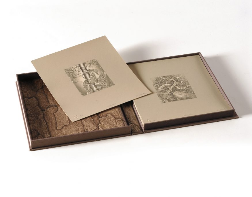 Folio Shot – 7, 2-Color Lithographs from Stone and Plate on Somerset Satin. Folio made of Raw Silk and Intaglio on Mulberry
